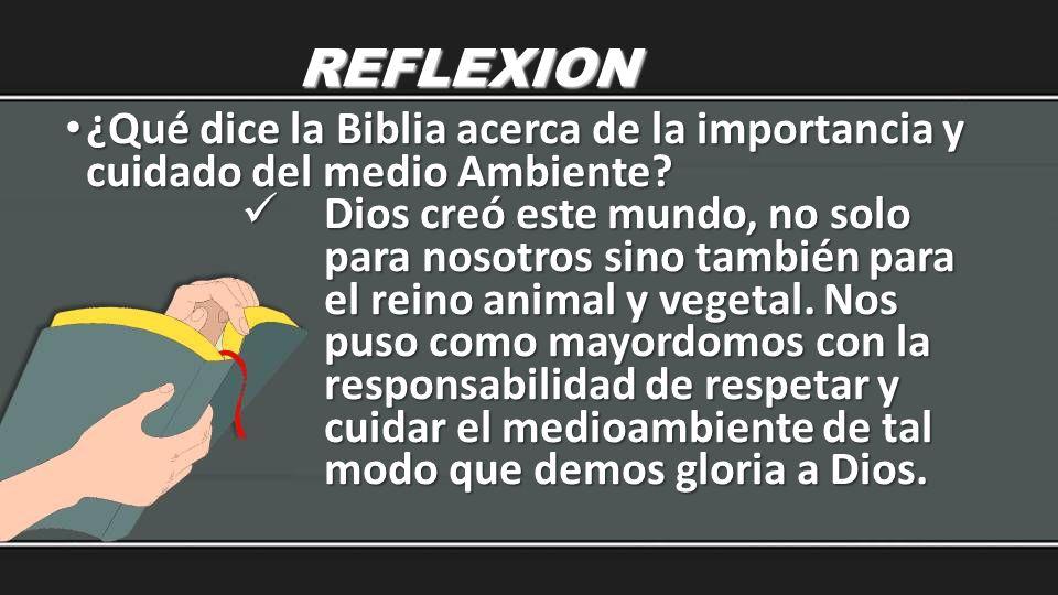 REFLEXION ¿Qué dice la Biblia acerca de la importancia y cuidado del medio Ambiente