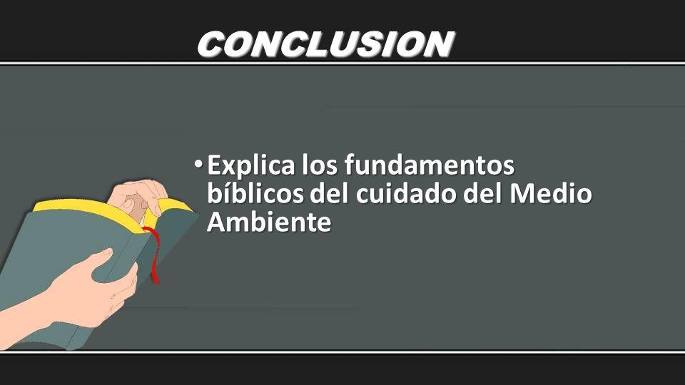 CONCLUSION Explica los fundamentos bíblicos del cuidado del Medio Ambiente