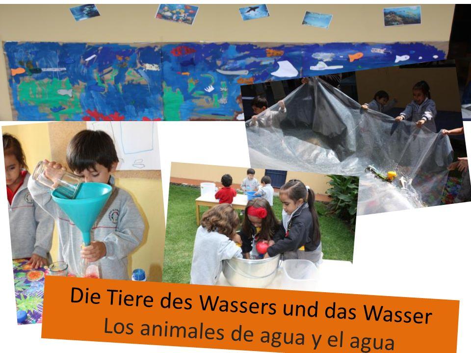 Die Tiere des Wassers und das Wasser Los animales de agua y el agua