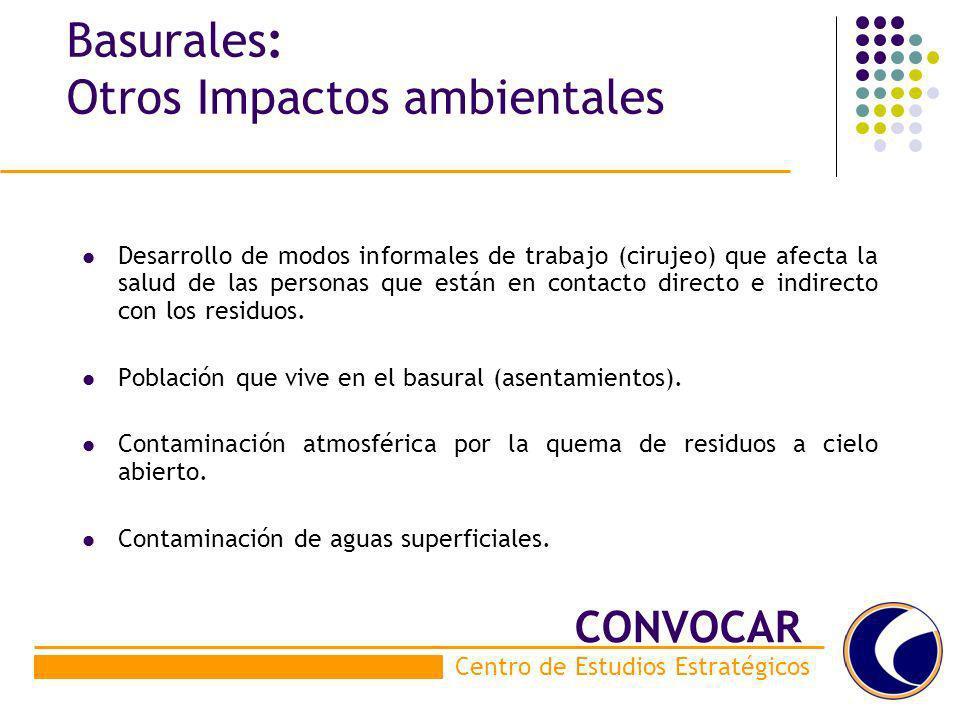 Basurales: Otros Impactos ambientales