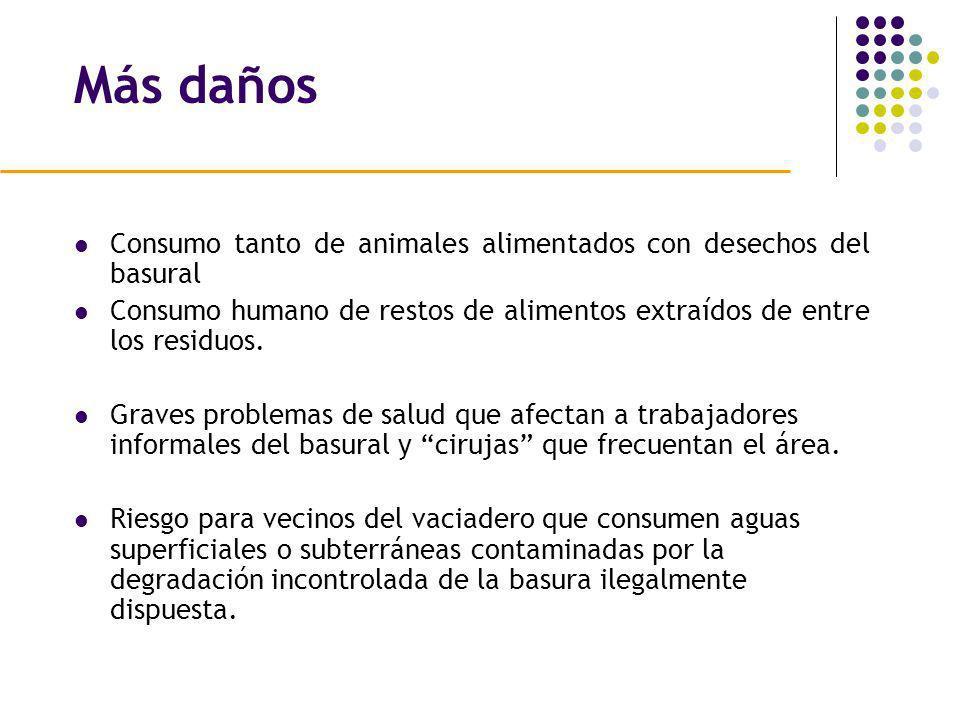 Más daños Consumo tanto de animales alimentados con desechos del basural. Consumo humano de restos de alimentos extraídos de entre los residuos.