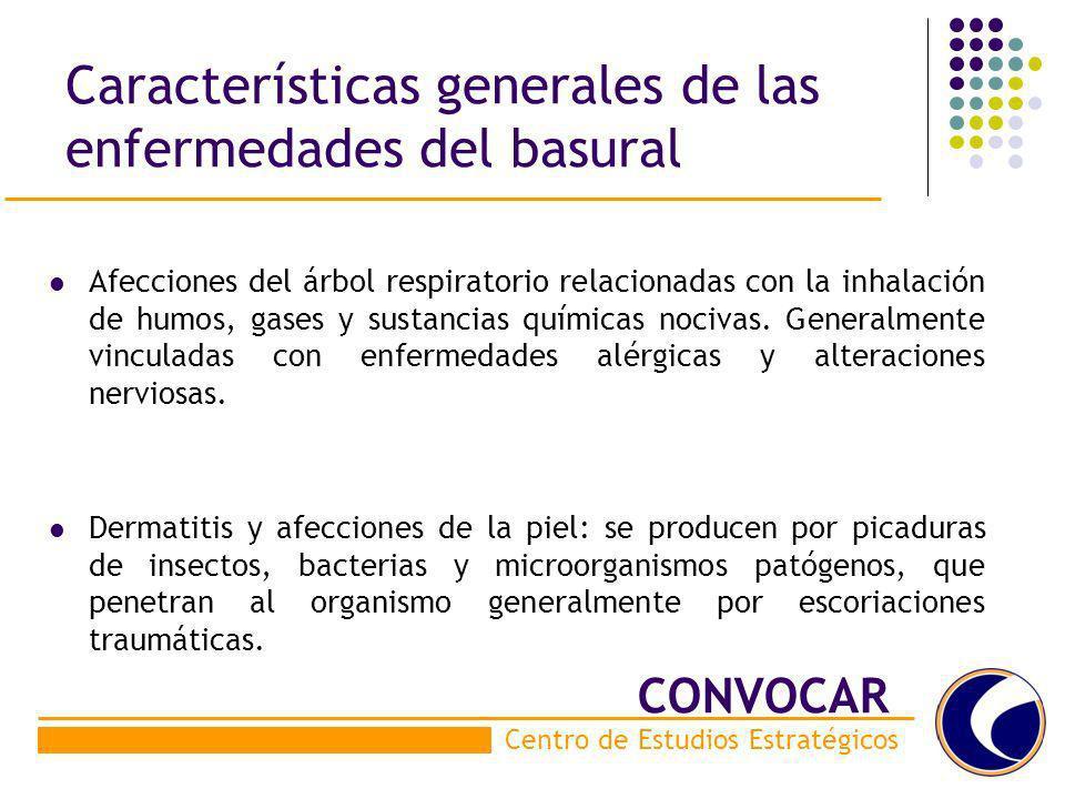 Características generales de las enfermedades del basural