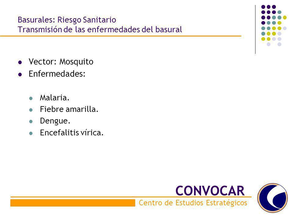 CONVOCAR Vector: Mosquito Enfermedades: