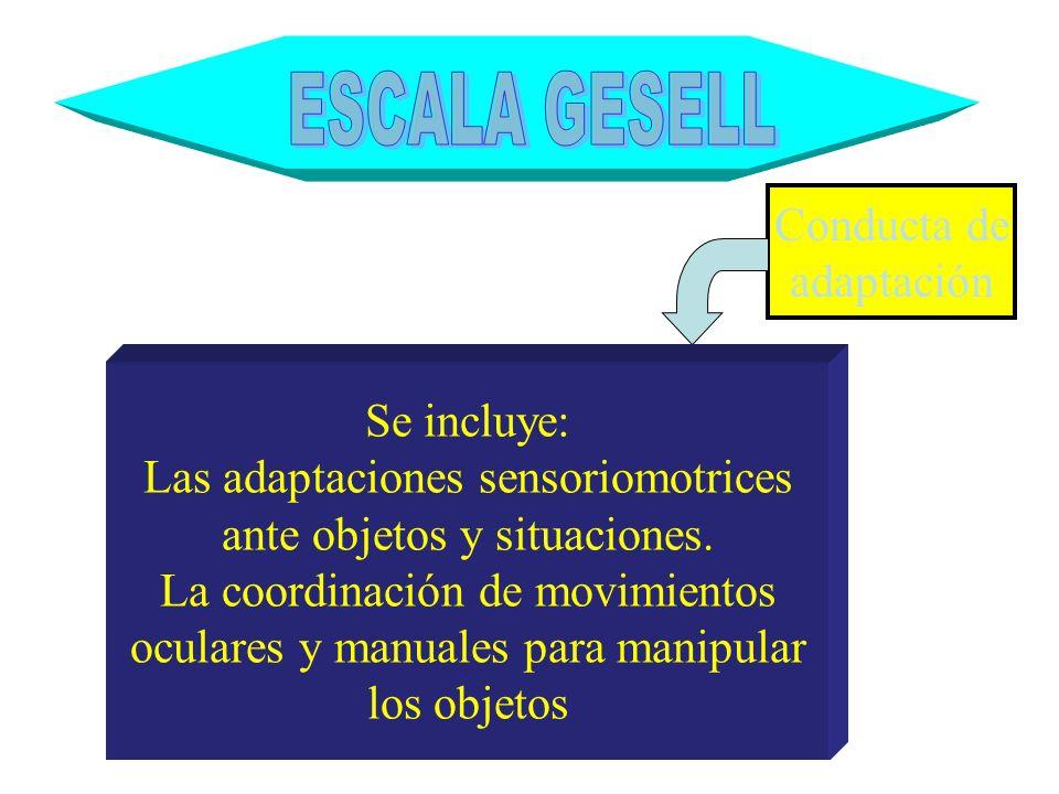ESCALA GESELL Conducta de adaptación Se incluye: