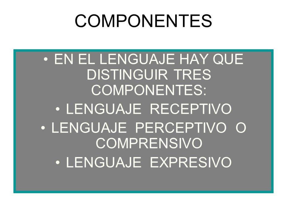 COMPONENTES EN EL LENGUAJE HAY QUE DISTINGUIR TRES COMPONENTES: