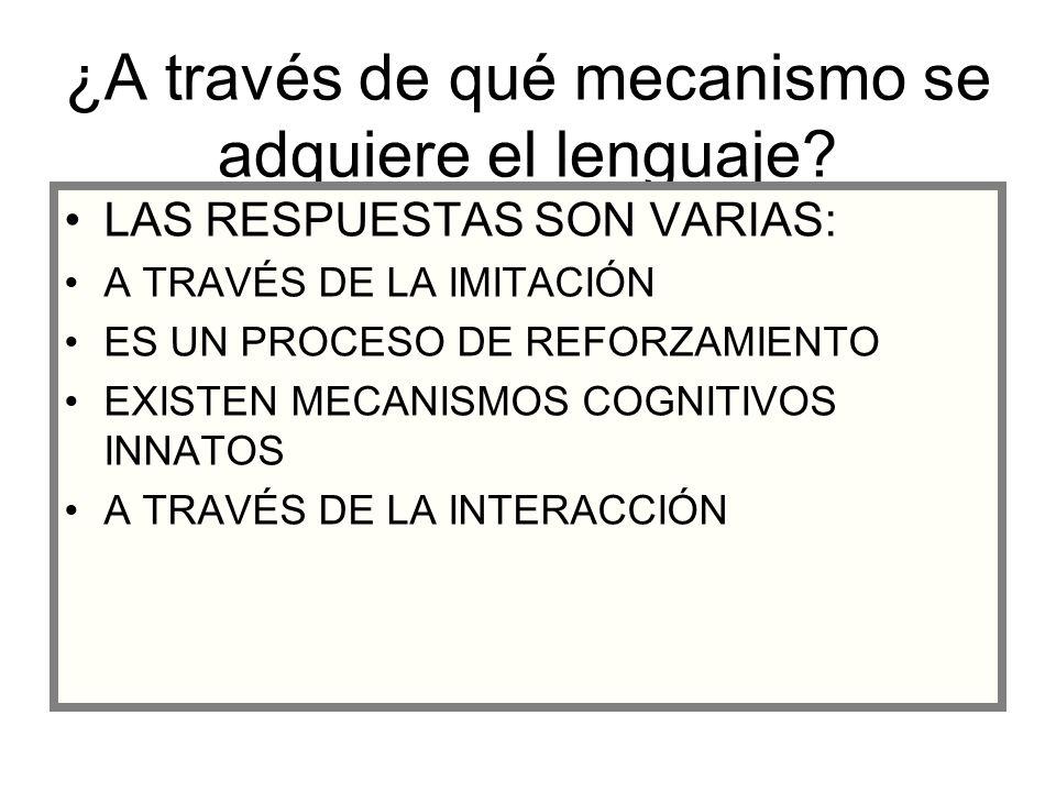 ¿A través de qué mecanismo se adquiere el lenguaje