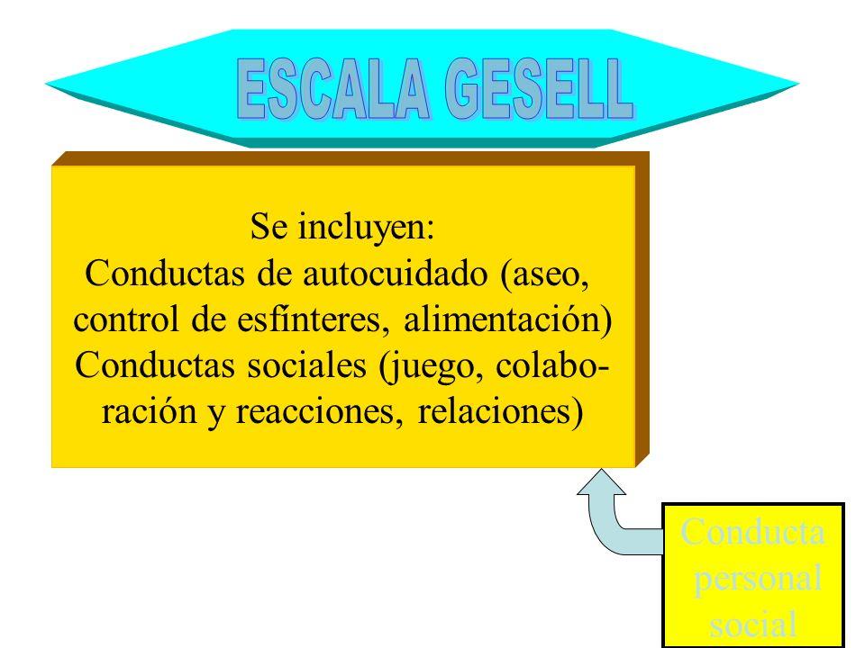 ESCALA GESELL Se incluyen: Conductas de autocuidado (aseo,