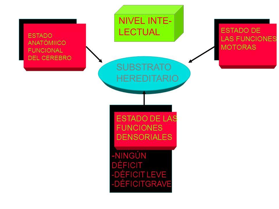 NIVEL INTE- LECTUAL SUBSTRATO HEREDITARIO -NINGÚN ESTADO DE LAS