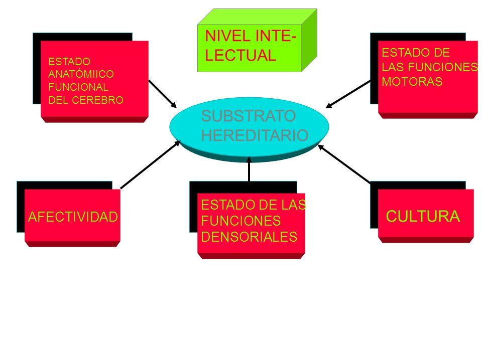 NIVEL INTE- LECTUAL SUBSTRATO HEREDITARIO CULTURA ESTADO DE LAS