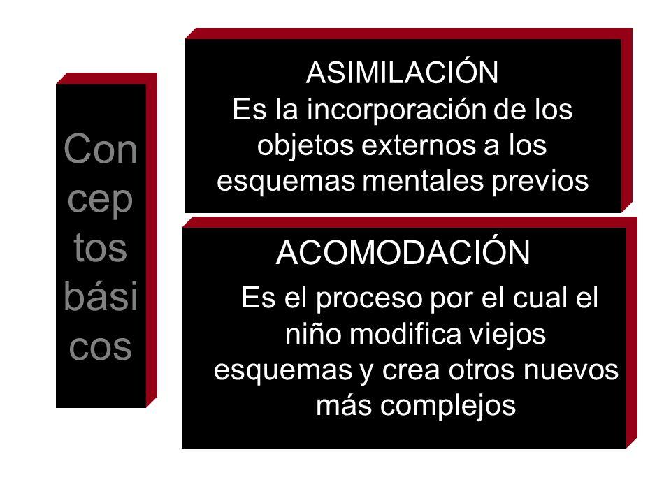 Conceptos básicos ACOMODACIÓN