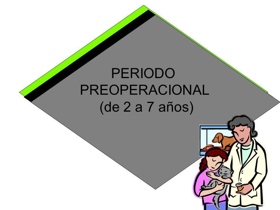 PERIODO PREOPERACIONAL (de 2 a 7 años)