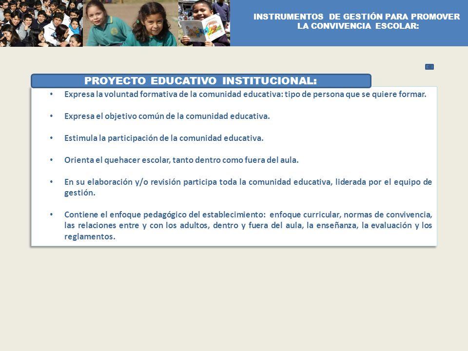 PROYECTO EDUCATIVO INSTITUCIONAL: