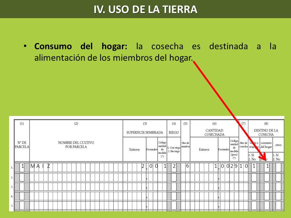 IV. USO DE LA TIERRA Consumo del hogar: la cosecha es destinada a la alimentación de los miembros del hogar.
