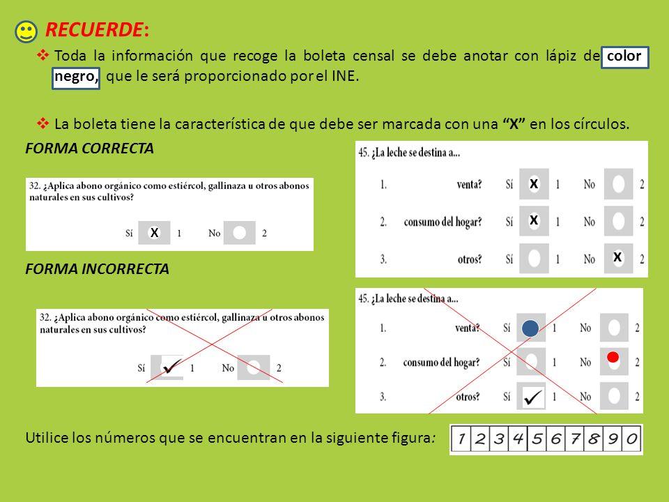 RECUERDE: Toda la información que recoge la boleta censal se debe anotar con lápiz de color negro, que le será proporcionado por el INE.