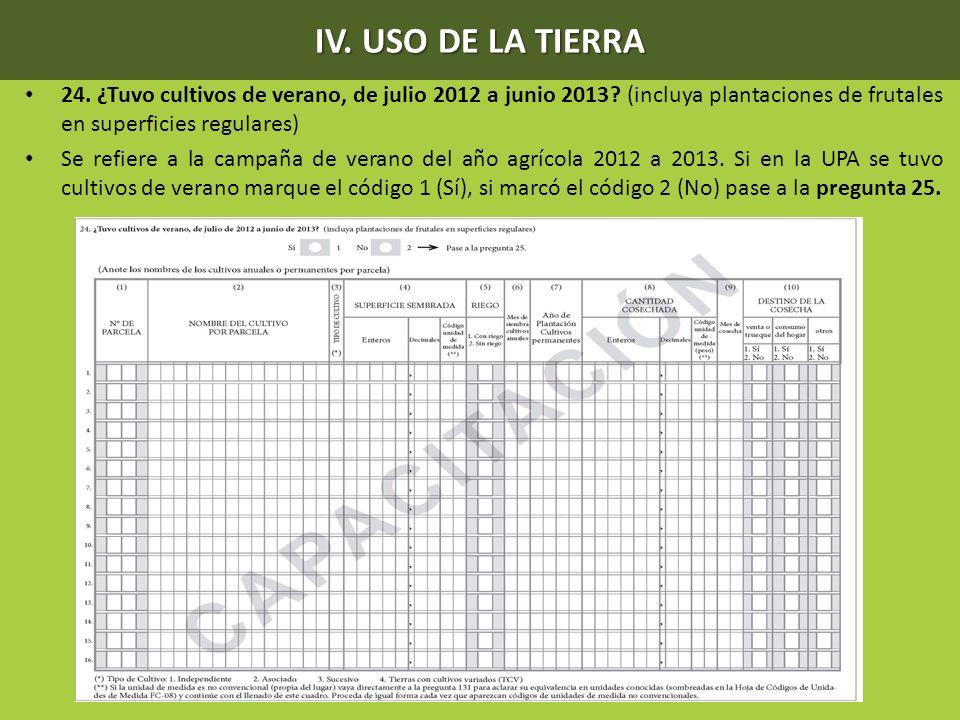 IV. USO DE LA TIERRA 24. ¿Tuvo cultivos de verano, de julio 2012 a junio 2013 (incluya plantaciones de frutales en superficies regulares)