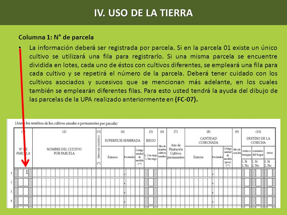 IV. USO DE LA TIERRA Columna 1: N° de parcela