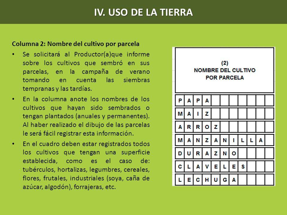 IV. USO DE LA TIERRA Columna 2: Nombre del cultivo por parcela