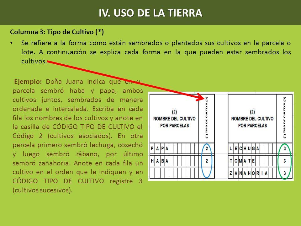 IV. USO DE LA TIERRA Columna 3: Tipo de Cultivo (*)