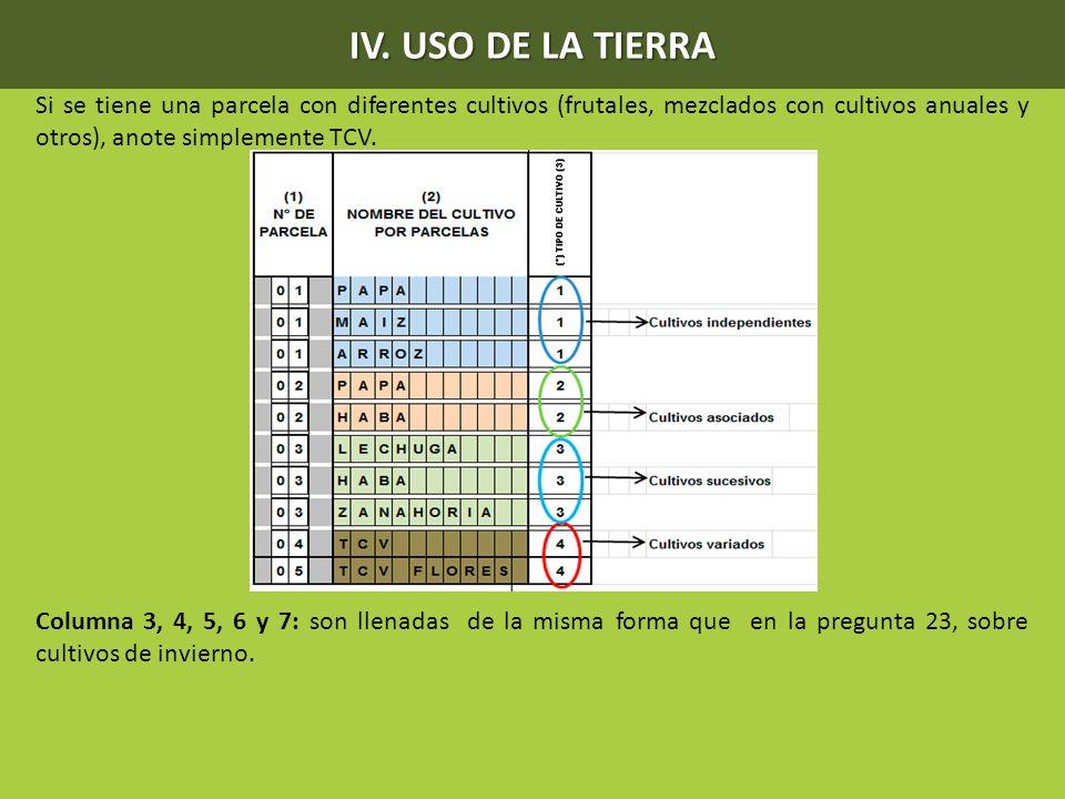 IV. USO DE LA TIERRA Si se tiene una parcela con diferentes cultivos (frutales, mezclados con cultivos anuales y otros), anote simplemente TCV.