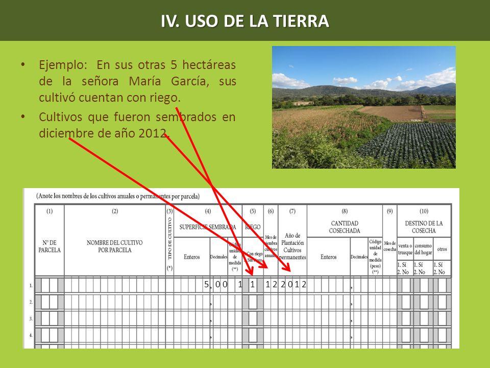 IV. USO DE LA TIERRA Ejemplo: En sus otras 5 hectáreas de la señora María García, sus cultivó cuentan con riego.