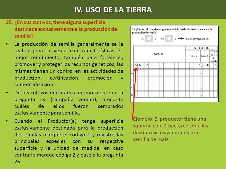 IV. USO DE LA TIERRA 25. ¿En sus cultivos, tiene alguna superficie destinada exclusivamente a la producción de semilla