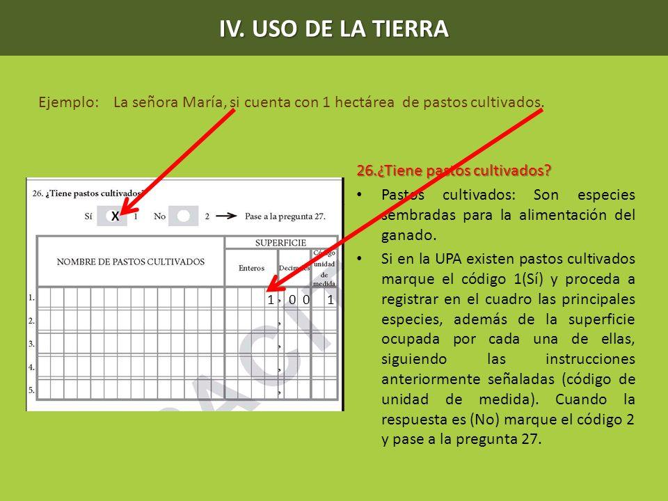 IV. USO DE LA TIERRA Ejemplo: La señora María, si cuenta con 1 hectárea de pastos cultivados. 26.¿Tiene pastos cultivados