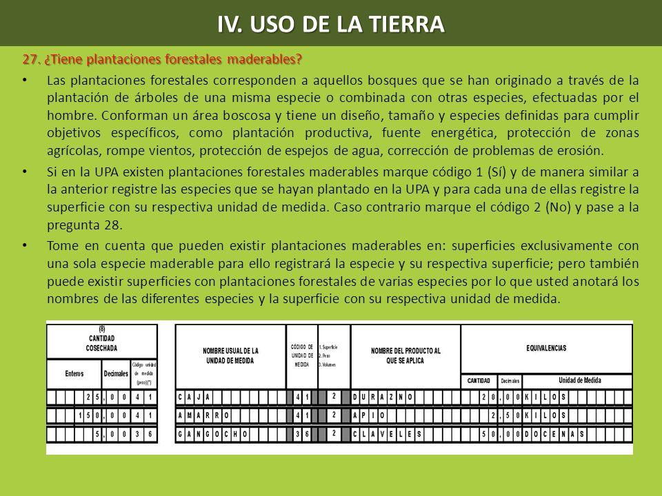 IV. USO DE LA TIERRA 27. ¿Tiene plantaciones forestales maderables