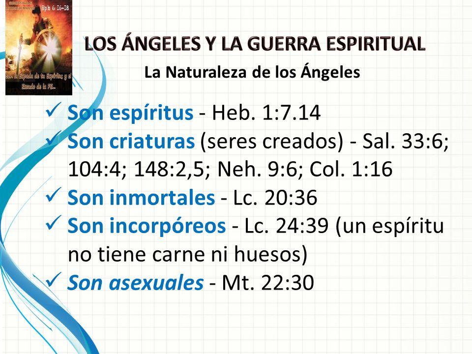 Son incorpóreos - Lc. 24:39 (un espíritu no tiene carne ni huesos)