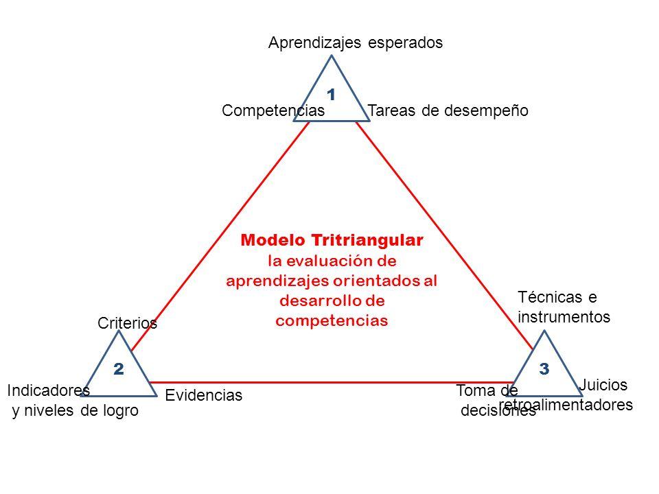 la evaluación de aprendizajes orientados al desarrollo de competencias