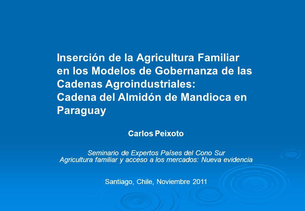 Inserción de la Agricultura Familiar en los Modelos de Gobernanza de las Cadenas Agroindustriales: Cadena del Almidón de Mandioca en Paraguay