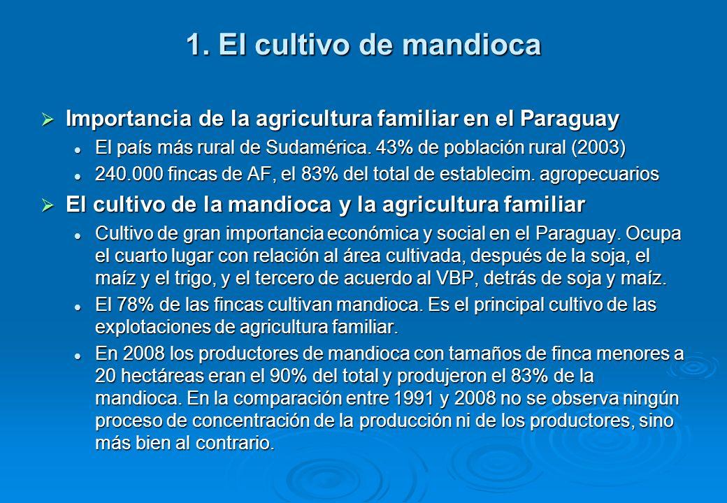 1. El cultivo de mandioca Importancia de la agricultura familiar en el Paraguay. El país más rural de Sudamérica. 43% de población rural (2003)