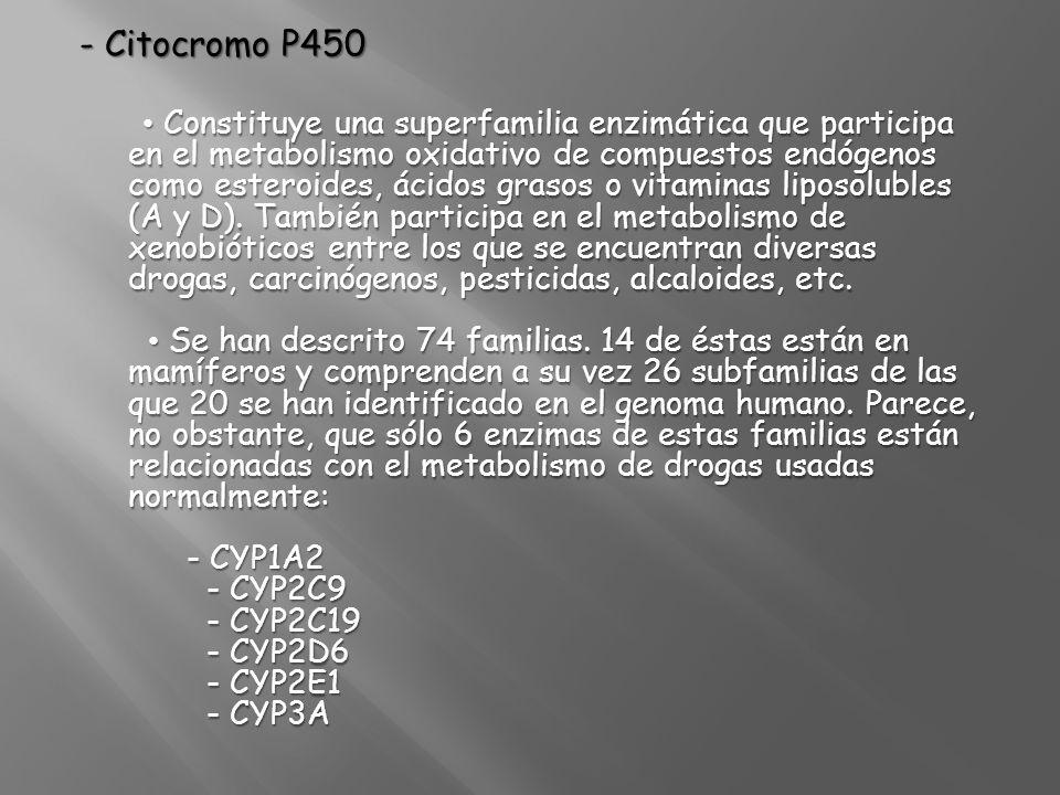 - Citocromo P450