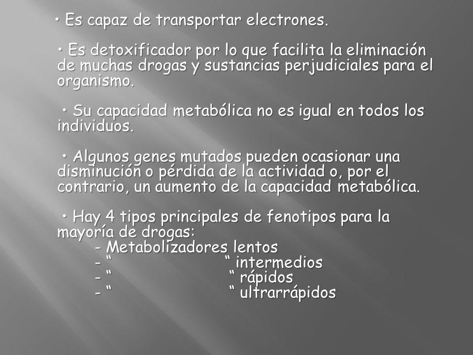 • Es capaz de transportar electrones