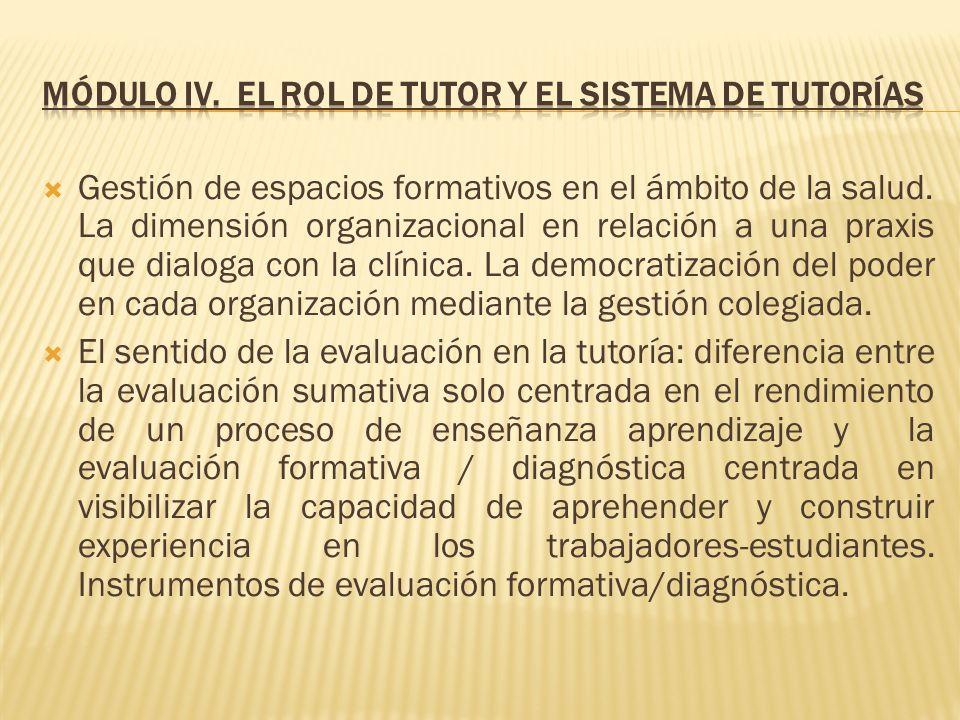 Módulo IV. El rol de tutor y el sistema de tutorías