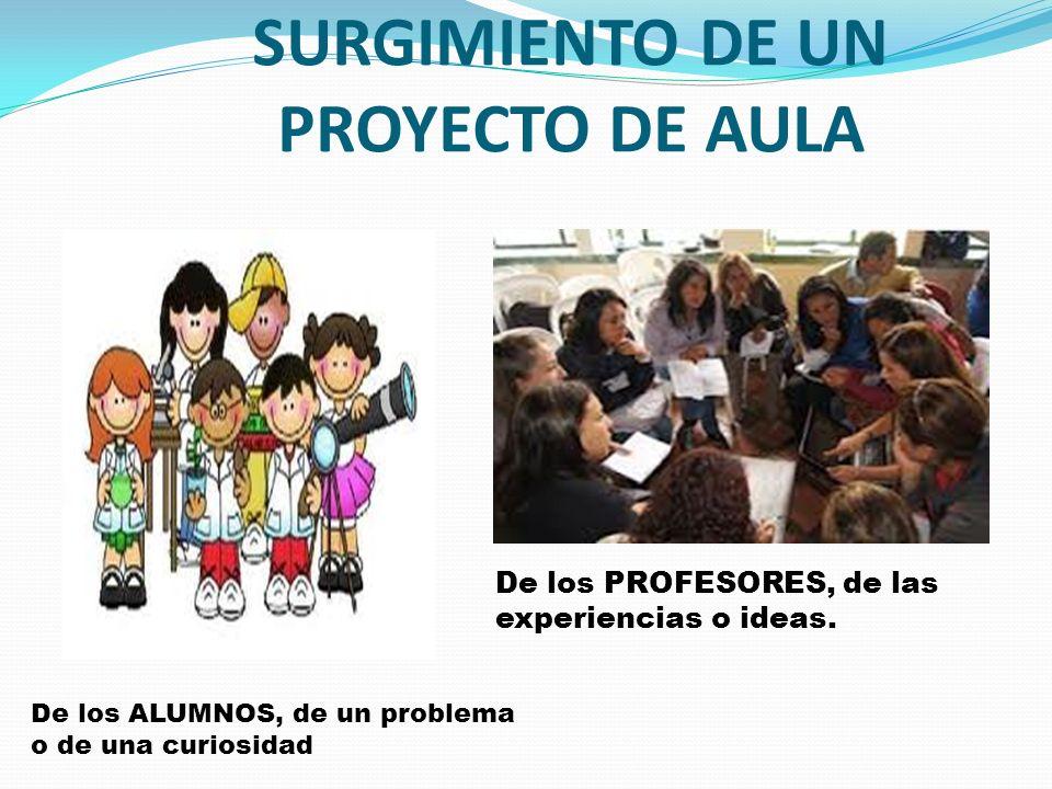 SURGIMIENTO DE UN PROYECTO DE AULA