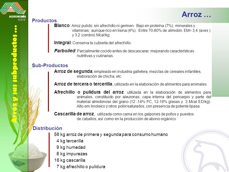 Arroz y sus subproductos …