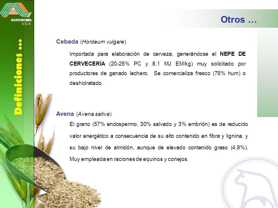Definiciones … Otros … Cebada (Hordeum vulgare) Avena (Avena sativa)
