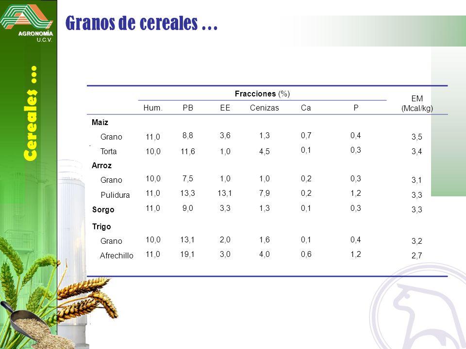 Granos de cereales … Cereales … Fracciones (%) EM (Mcal/kg) Hum. PB EE