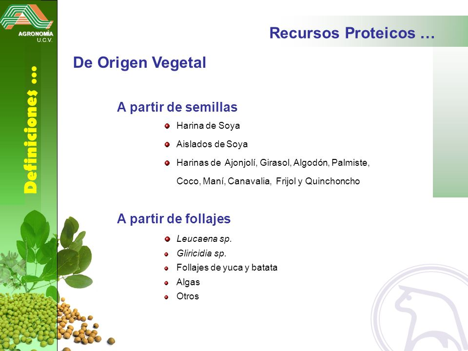 Definiciones … Recursos Proteicos … De Origen Vegetal