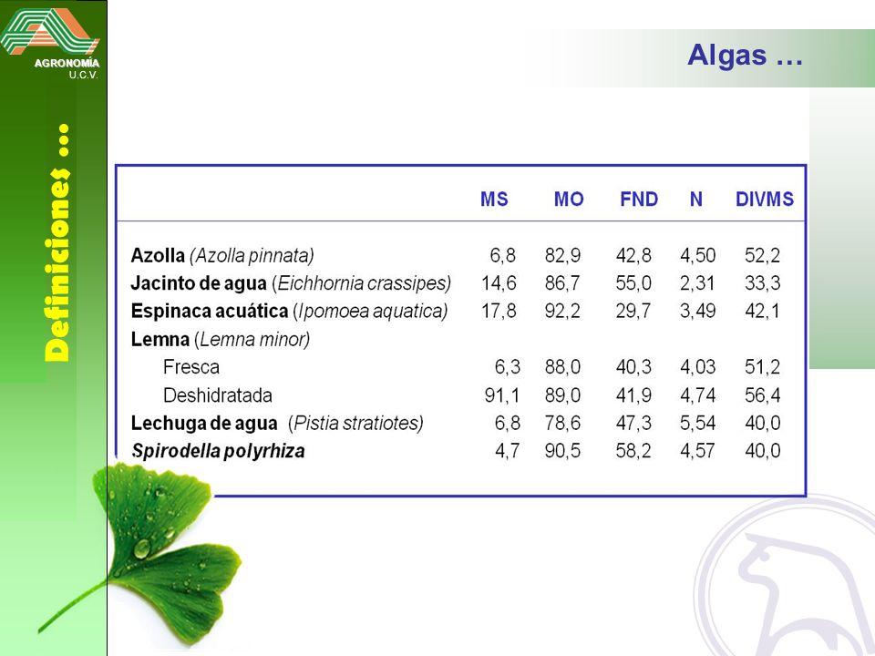 Algas … AGRONOMÍA U.C.V. Definiciones …
