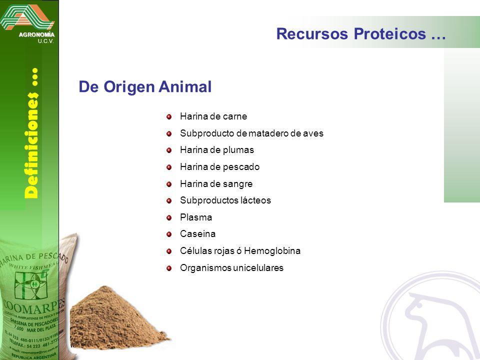 Definiciones … Recursos Proteicos … De Origen Animal Harina de carne