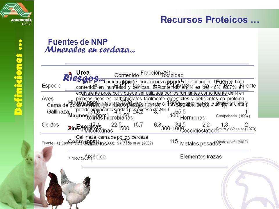 Definiciones … Recursos Proteicos … Fuentes de NNP Urea Excretas