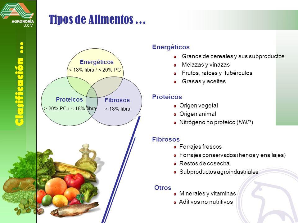 Tipos de Alimentos … Clasificación … Energéticos Proteicos Fibrosos