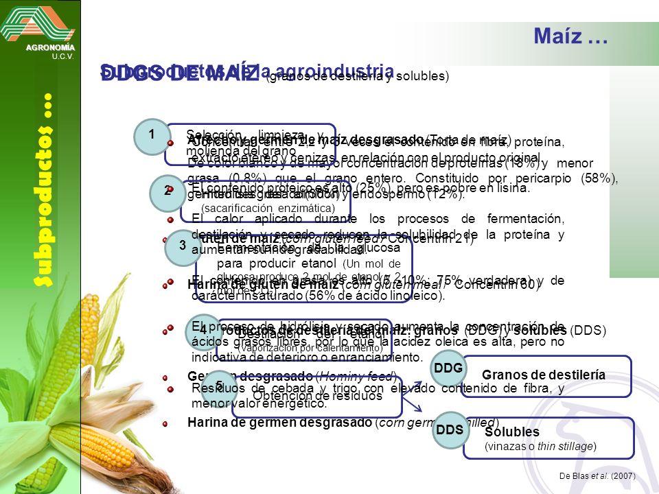 Subproductos … Maíz … DDGS DE MAÍZ (granos de destilería y solubles)