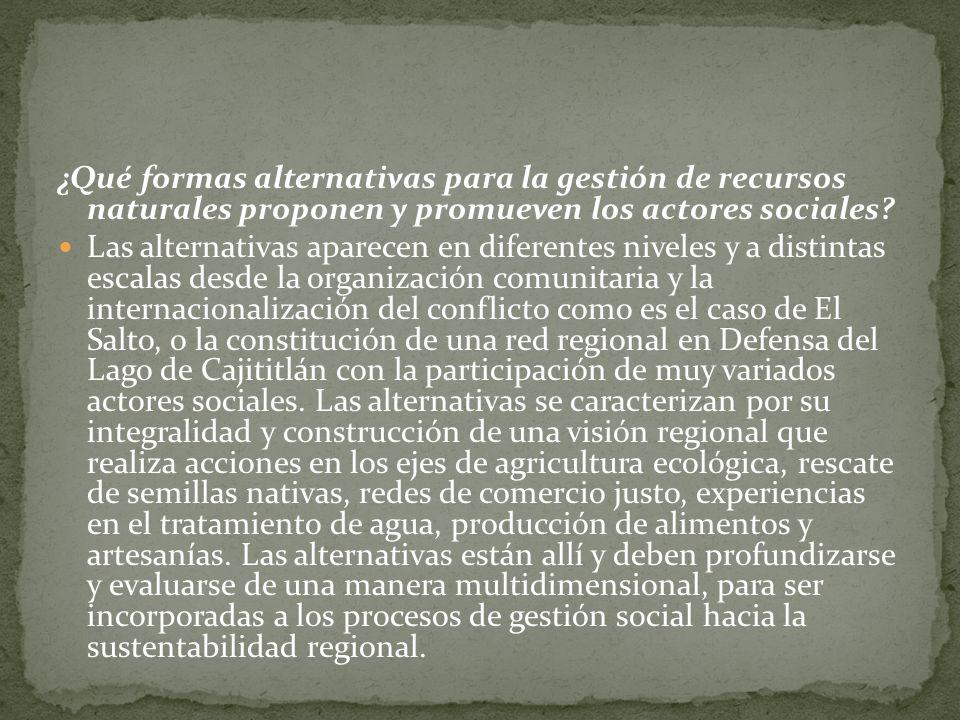 ¿Qué formas alternativas para la gestión de recursos naturales proponen y promueven los actores sociales