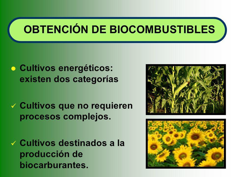 OBTENCIÓN DE BIOCOMBUSTIBLES