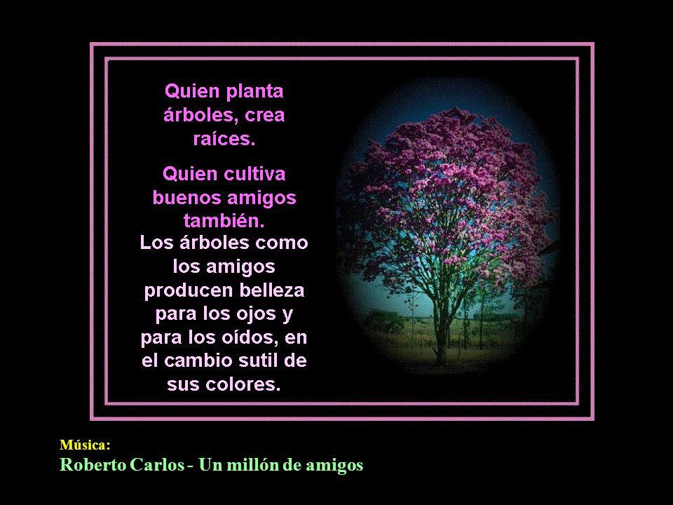 Roberto Carlos - Un millón de amigos