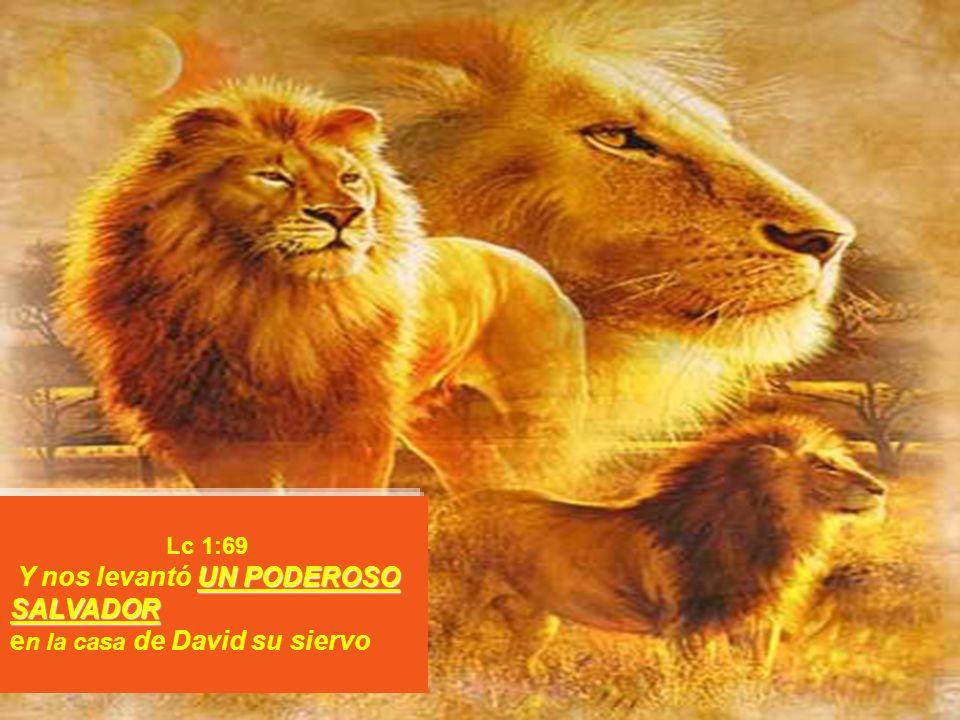 Lc 1:69 Y nos levantó UN PODEROSO SALVADOR en la casa de David su siervo