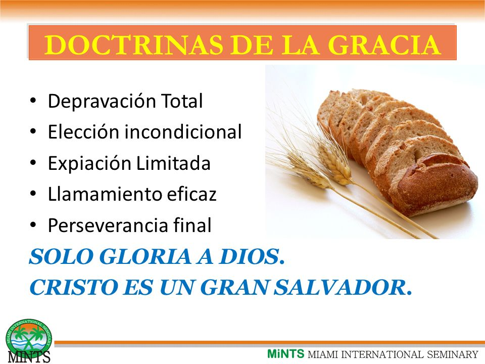 DOCTRINAS DE LA GRACIA Depravación Total Elección incondicional
