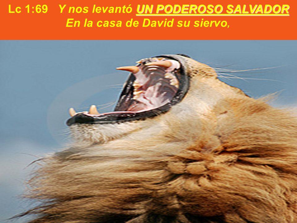 Lc 1:69 Y nos levantó UN PODEROSO SALVADOR En la casa de David su siervo,